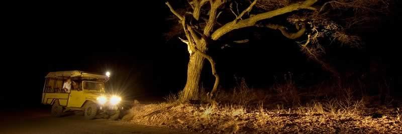 africa_serengeti_safaris_night_game_drive