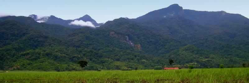 africa_serengeti_safaris_udzungwa_mountains