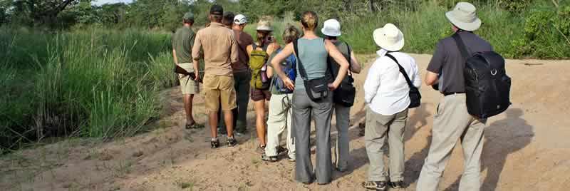 africa_serengeti_safaris_walking_safari_inside_park